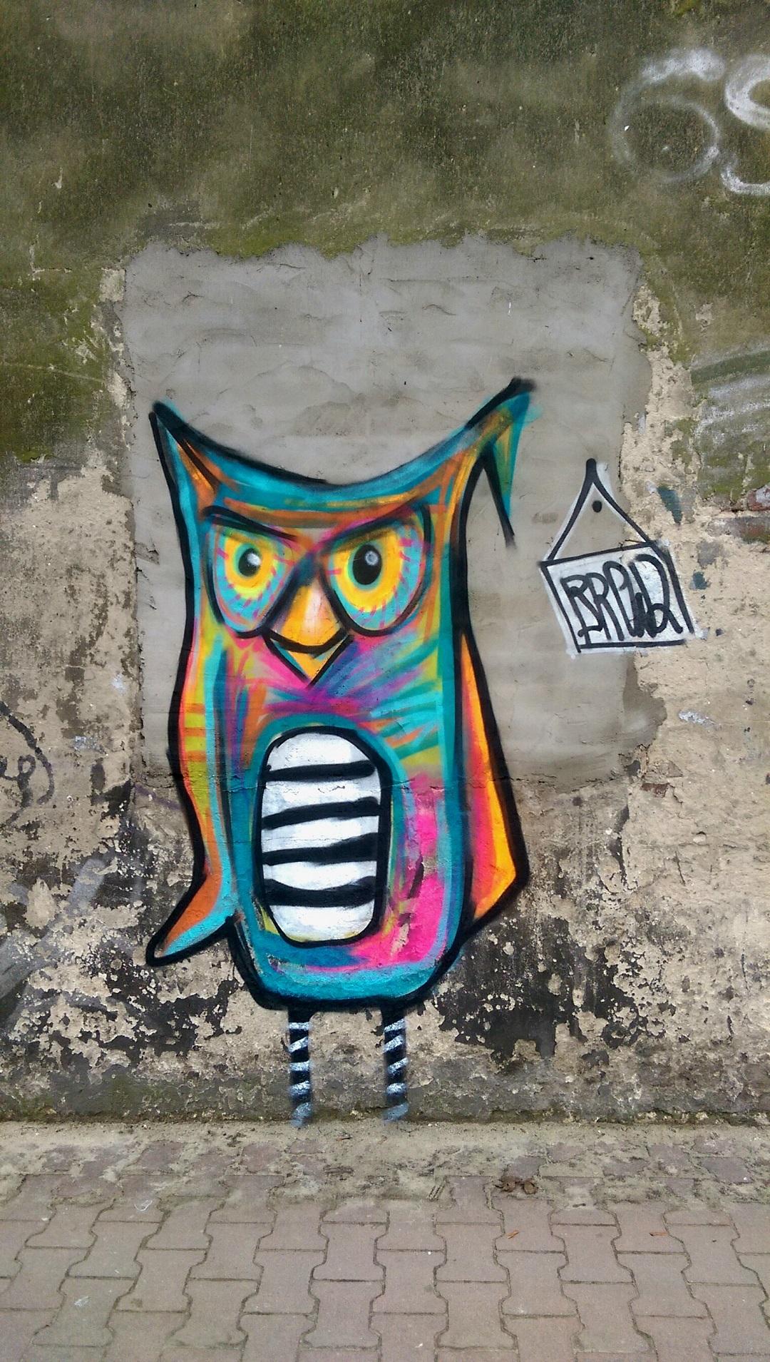 brewka-street-art-sowa-owl-warszawa
