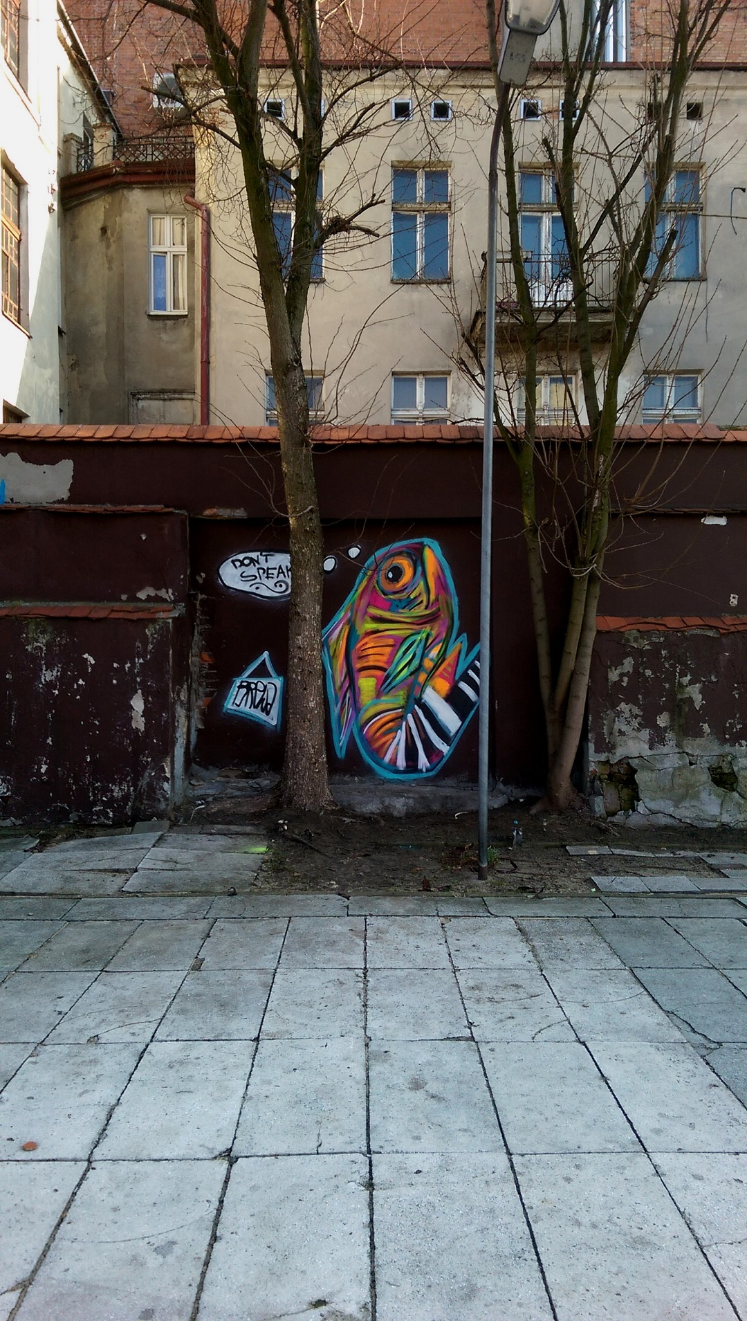 ryba-brewka-street-art-portrety-zwierzat